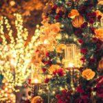 クリスマスはプロマジシャンを呼ぼう